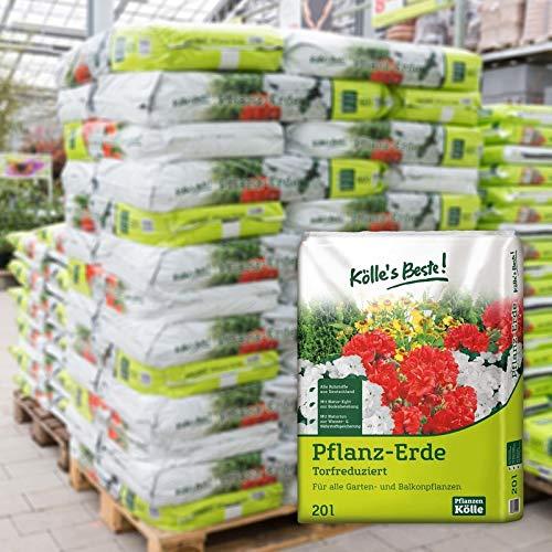 Kölle's Beste! Pflanzerde torfreduziert, 900 Liter gesamt, 45 Sack à 20 Liter auf Palette