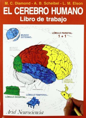 El cerebro humano: Libro de trabajo (Neurociencia (ariel))