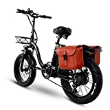 BAHAOMI Bicicleta Eléctrica Bicicleta De Montaña Eléctrica para Adultos Neumáticos De Grasa De 20 Pulgadas 4.0 Plegables E-Bike Todo Terreno Freno De Disco Delantero Y Trasero,48V 24AH 750W
