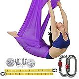El yoga antigravedad Hamaca Correa volar para Yoga Pilates aérea la hamaca de yoga Pilates el columpio de yoga el equipo de la danza aérea Aerial Silks (Violeta, 5)