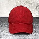 Aibccr Gorra de béisbol de Agua de Lavado de algodón Puro, Gorra de Tablero de luz Apenada, Sombrero Retro