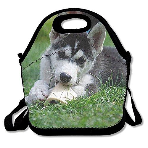 Lunch Tote Little Husky Lunch-Boxen Lunchpaket Handtasche Lebensmittel Aufbewahrung passend für Schule Reisen Arbeit Outdoor