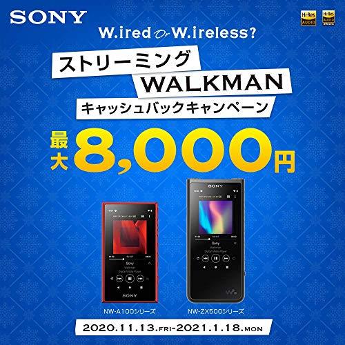 SONY『ウォークマンA100シリーズ(NW-A106-L)』