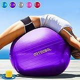 Arteesol Balle d'exercice 65cm/75cm Anti-éclatement Anti-dérapant Yoga Swiss...