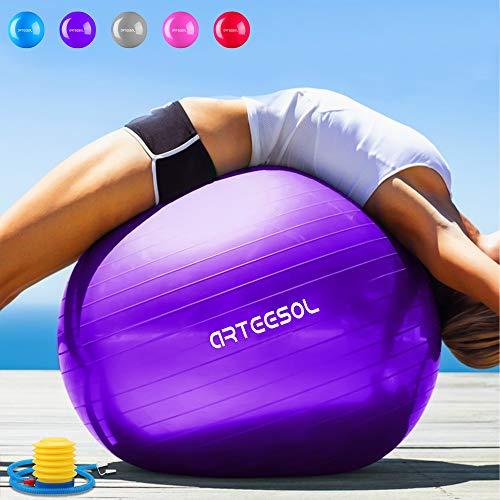 Arteesol Balle Fitness 65 cm/75 cm Anti-éclatement Anti-dérapant Yoga Swiss Ball Accouchement Balle Rapide Pompe Fitness Gym Yoga Pilates Core Training Thérapie Physique
