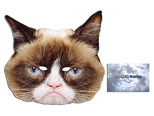 BundleZ-4-FanZ Fan Packs Mürrisches Katzen-Tier Single Karte / Pappe Partei Maske Enthält 6X4 (15X10Cm) starfoto