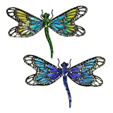 HONGLAND Metal Dragonfly Wall Decor Blue and Green Glass Art Sculpture Outdoor Hanging Decorations Set of 2 for Home Garden Bedroom