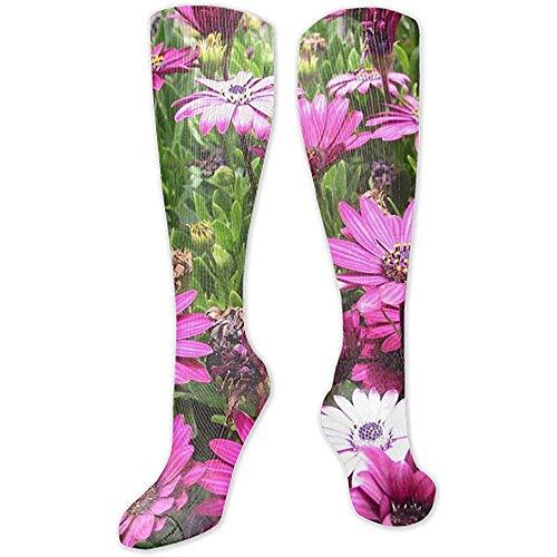 Web-ster Digitale Daffodils Chrysanten Carnaties Vaas Art Atletische Unisex Klassiekers Hoge Sokken Stocking Sokken Sport Sock