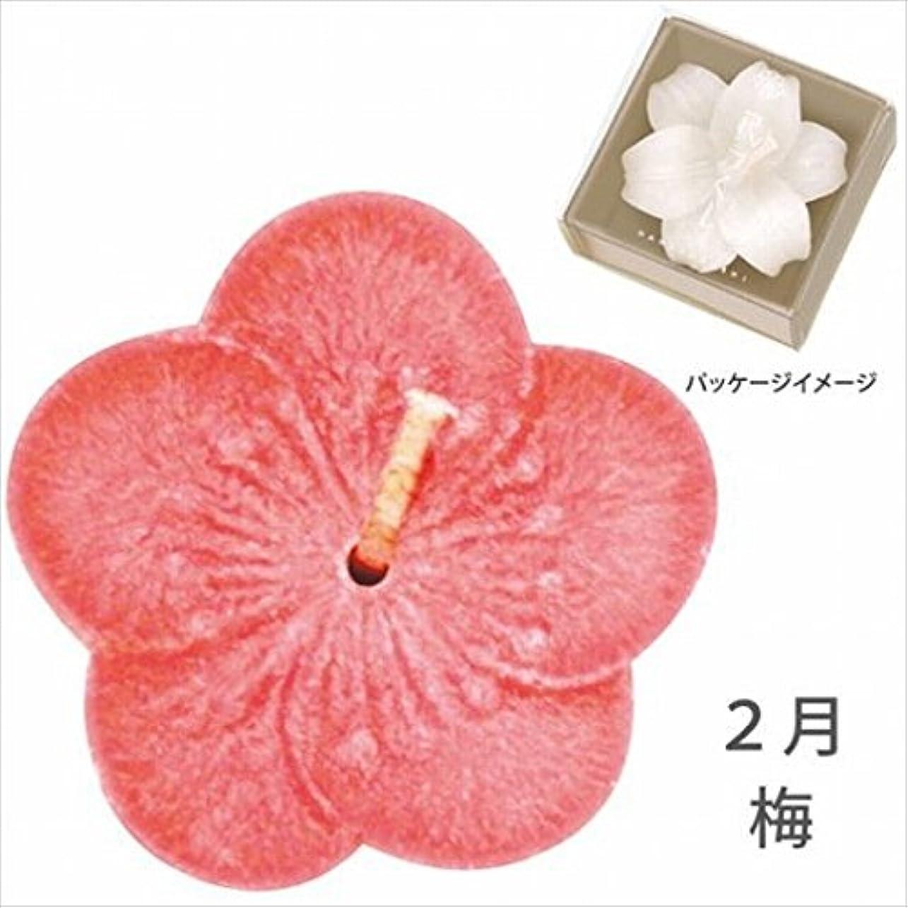 ブレーキ興奮する大腿カメヤマキャンドル( kameyama candle ) 花づくし(植物性) 梅 「 梅(2月) 」 キャンドル