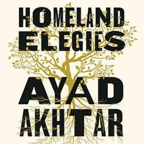 Homeland Elegies Titelbild