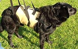 Tiffys Tragehhilfe / Gehhilfe für Hunde