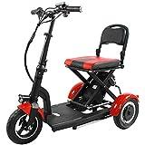 MMJC - Patinete eléctrico con tres ruedas para adulto, triciclo de 36 V,...