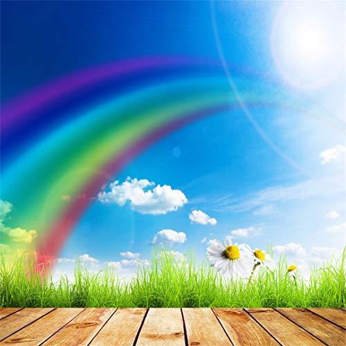 EdCott 5 x 5 ft Primavera Soleado Fotografía arco iris verde hierba fondo azul cielo blanco nube flores recién nacidos niño niña niño artista requisiten Pascua Papel pintado
