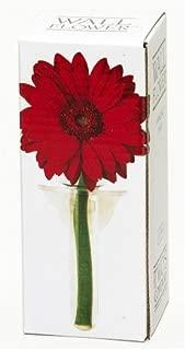 Wall Flower, Hanging Bud Vase