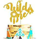 Wild One Cake Topper for Tribal Boho, Teepee Dream Catcher Bohemian, Wild One Theme 1st Birthday Party Supplies Decorations
