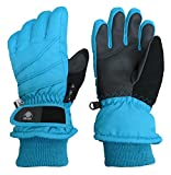 N'Ice Caps Adults Thinsulate and Waterproof Bulky Ski Glove with Ridges (Large/X-Large, Turquoise 1)