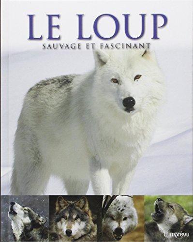 Le loup sauvage et fascinant