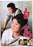 渡哲也 俳優生活55周年記念「日活・渡哲也DVDシリーズ」 白鳥 初DVD化 特選1...[DVD]