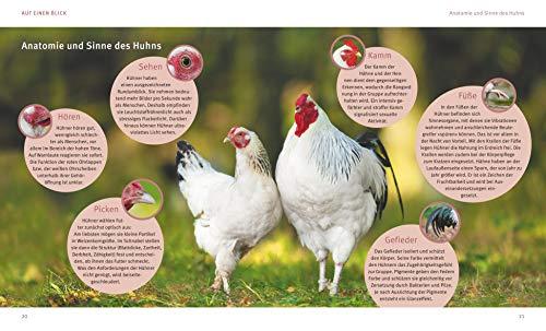 Hühner halten: Das Rundum-Sorglos-Paket (GU Tierratgeber) - 5