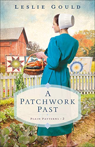 Compare Textbook Prices for A Patchwork Past Plain Patterns  ISBN 9780764235238 by Gould, Leslie