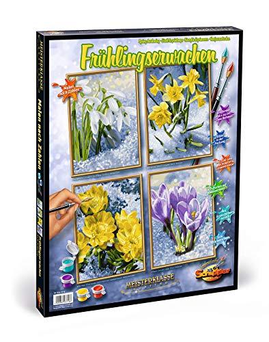 Schipper Malen nach Zahlen , Frühlingserwachen , Bilder malen für Erwachsene, inklusive Pinsel und Acrylfarben, Quattro je 18 x 24 cm