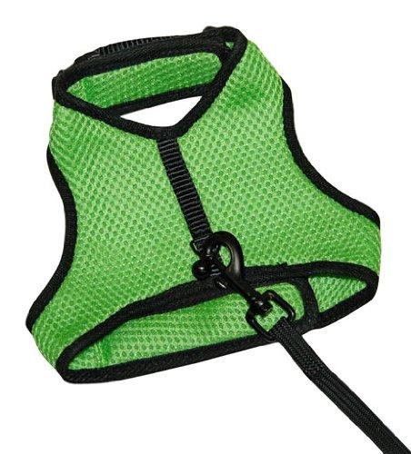 Kerbl 82651 Sport Katzengeschirr grün mit flexibler Leine 120 cm