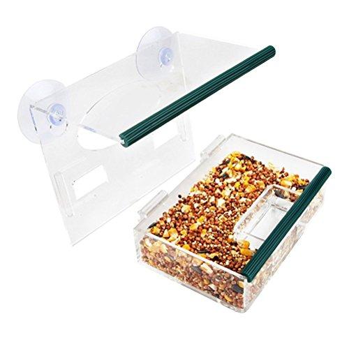 Ccgdgft Fenster Vogelfutterspender mit Saugnäpfen entfernbarer großer Vogel-Zufuhr-Behälter mit Ablauflöchern