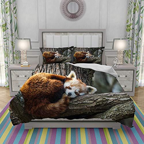 REIOIYE Duvet Cover Set-Bedding,Red Panda Firefox Or Lesser Panda,Quilt Cover Bedlinen-Microfibre 200x200cm with 2 Pillowcase 50x80cm
