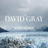 Songtexte von David Gray - Life in Slow Motion