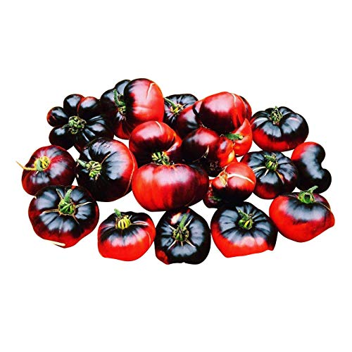 Indigo '' Blue Beauty '' 10 Graines - Tomate Indigo Au Steak De Boeuf