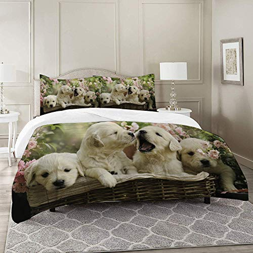 COLTEMC Duvet Cover Set-Bedding,Red Puppy Little Golden Retriever Puppies In Basket Summer Pink Rose Garden Yellow,Quilt Cover Bedlinen-Microfibre 200x200cm with 2 Pillowcase 50x80cm