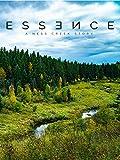 Essence: A Ness Creek Story