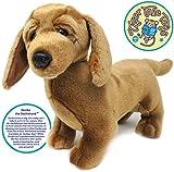 Derika The Dachshund   12 Inch Stuffed Animal Plush Weenie Dog   by Tiger Tale Toys
