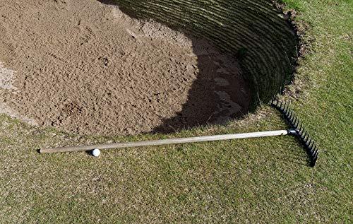 Home Comforts Golf Rake Golf Ball Ball Sand Sport Bunker Vivid Imagery Laminated Poster Print 24 x 36