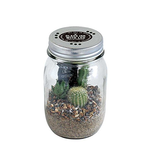 GLASS JAR WITH LED SABOTEN (グラスジャー ウィズ LED サボテン) Sサイズの写真