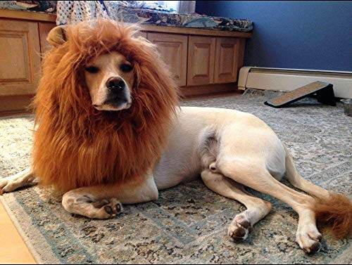 OMG Adorables Disfraz de Melena de león para Perro