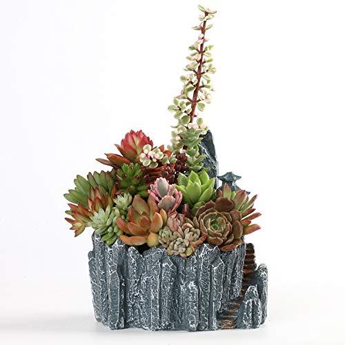 WBFN Pots de Plantes - Nouveau Pot rocailles créatif charnues Fleur Ornements de Plateau de résine charnues, for Les Plantes d'intérieur extérieur Balcon Décor Cadeau Planteur Bureau