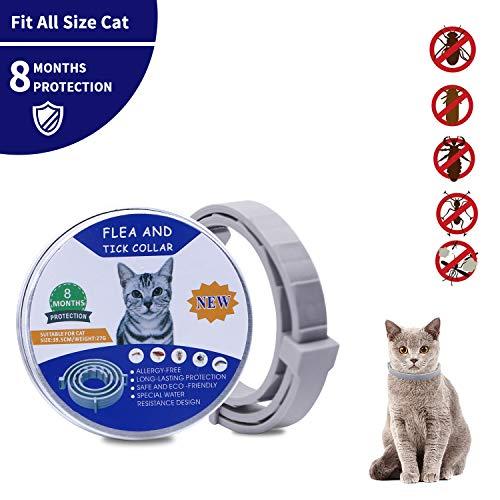 GREMAG Collare antipulci per Gatti Impermeabile con Oli Essenziali Naturali per 8 Mesi di Protezione, pulci e zecche Trattamento Efficace per Gattini(38cm)