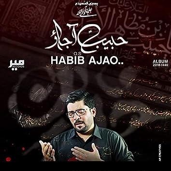 Habib Aa Jao