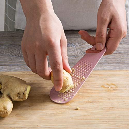 AAPP SHOP Handmatige knoflookpers huishoudelijke knoflook knoflook gember slijpen board om knoflook gember sap knoflook machine slijpen modder knoflook schoon