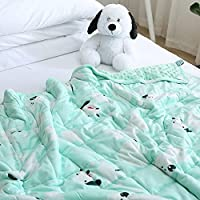 ZonLi Soft Minky Material with Glass Beads Kids Weighted Blanket
