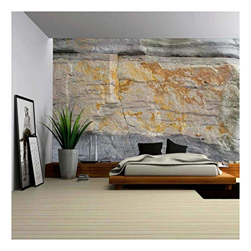 wall26 - Abstract Background Texture of Seashore Rock of Sandgate - Removable Wall Mural | Self-Adhesive Large Wallpaper - 100x144 inches