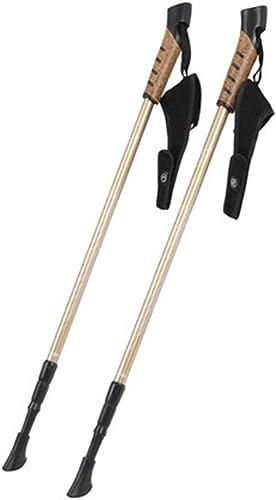 HBWJSH Trekking Pole - Canne en Aluminium, Canne (2 Packs)