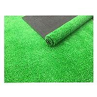 現実的な屋内/屋外人工芝排水孔&ラバーバッキング、屋内屋外フェイクグラスアストロラグ (Color : A, Size : 2m×2m)