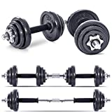 Lions 20kg Dumbbell Iron Set Adjustable Hand Free Weights Barbell Bar Biceps Triceps