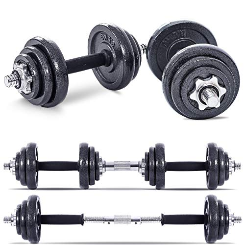 Lions 20kg Dumbbell Iron Set Adjustable Hand Free Weights Barbell Bar Biceps Triceps Home Gym Weightlifting Fitness Bodybuilding Workout Training (20)