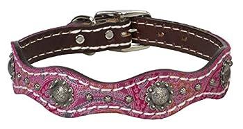 Weaver Pet Vintage Paisley Collar Pink ,1  x 19