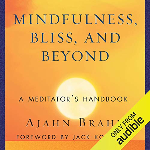 Couverture de Mindfulness, Bliss, and Beyond