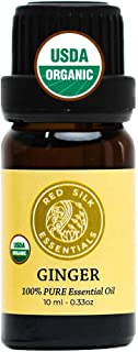 Organic Ginger Root Essential Oil, 100% Pure USDA Certified - Nausea, Respiratory, Digestion, Pain Relief - 10 ml