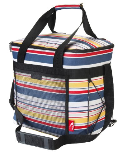 Picnic Cool Bag Includes 2 Freezer Gel Packs and 2 Bottle ice Coolers. Large- 28 Litre (Stripe)